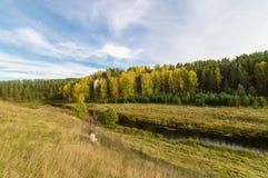 Ajardine con la roca por el río en otoño, Imagenes de archivo