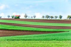 Ajardine con las curvas del campo rural verde texturizado plaughed ondulado foto de archivo libre de regalías