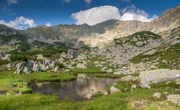 Ajardine con las nubes en las montañas de Retezat, Rumania Fotos de archivo