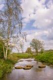 Ajardine con las piedras del steppjng en el río Regge en el Netherl Fotos de archivo libres de regalías