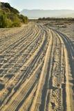 Ajardine con las pistas del neumático por la mañana tropical Baja, México del camino de la playa foto de archivo