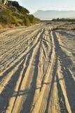 Ajardine con las pistas del neumático por la mañana tropical Baja, México del camino de la playa fotos de archivo