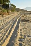 Ajardine con las pistas del neumático por la mañana tropical Baja, México del camino de la playa imágenes de archivo libres de regalías