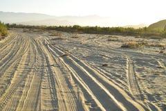 Ajardine con las pistas del neumático por la mañana tropical Baja, México del camino de la playa fotografía de archivo