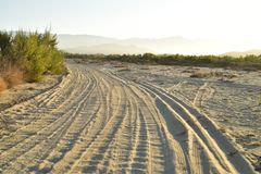 Ajardine con las pistas del neumático por la mañana tropical Baja, México del camino de la playa imagenes de archivo