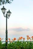 Ajardine con latern, el mar, las flores y la hierba Fotos de archivo