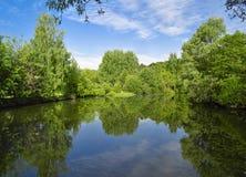 Ajardine con los árboles, reflejando en el agua Fotografía de archivo