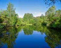 Ajardine con los árboles, reflejando en el agua Fotos de archivo libres de regalías
