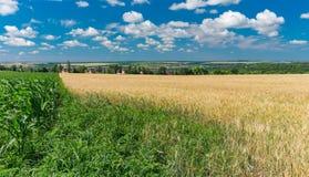 Ajardine con los campos agrícolas en Ucrania central cerca de la ciudad de Dnepr foto de archivo