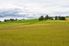 Ajardine con los campos coloreados y pocos las casas de la granja, Noruega Foto de archivo