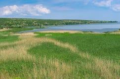 Ajardine con los campos de la precipitación en el lugar adonde el pequeño río Karachokrak fluye en Dnepr, Ucrania Foto de archivo libre de regalías