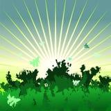 Ajardine con puesta del sol, el bosque, y la mariposa Imágenes de archivo libres de regalías