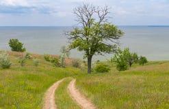 Ajardine con un camino de tierra abajo al depósito de Kakhovka situado en el río de Dnepr, Ucrania Imagenes de archivo