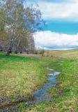 Ajardine con un pequeño runlet en el campo en día nublado soleado Imagen de archivo libre de regalías