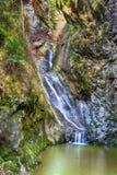 Ajardine con una cascada en un barranco, en el otoño Fotos de archivo