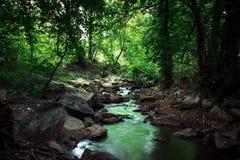 Ajardine, consistindo no rio, nas rochas e nas árvores Fotografia de Stock