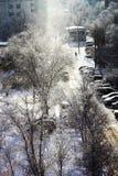 Ajardine da janela em um dia ensolarado do inverno brilhante gelado Fotografia de Stock