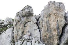 Ajardine das montanhas de Bucegi, parte de Carpathians do sul em Romênia Fotos de Stock Royalty Free
