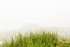 Ajardine das montanhas de Bucegi, parte de Carpathians do sul em Romênia em um dia nevoento Imagem de Stock Royalty Free