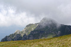 Ajardine das montanhas de Bucegi, parte de Carpathians do sul - Romênia Fotografia de Stock