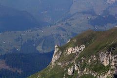 Ajardine das montanhas de Bucegi, parte de Carpathians do sul - Romênia Fotos de Stock