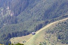 Ajardine das montanhas de Bucegi, parte de Carpathians do sul - Romênia Imagem de Stock
