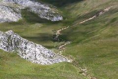 Ajardine das montanhas de Bucegi, parte de Carpathians do sul - Romênia Imagens de Stock Royalty Free