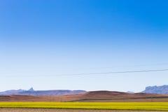 Ajardine de África do Sul, montanhas do ` s do dragão Foto de Stock Royalty Free