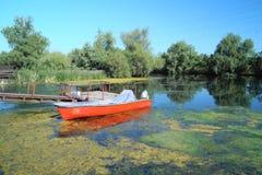 Ajardine do delta com barco, delta Dunarii de Danúbio de Romênia Fotografia de Stock