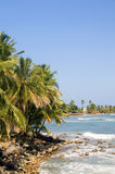 Ajardine el maíz grande Isl del mar del Caribe de árboles de coco de la palma del paisaje marino Foto de archivo libre de regalías