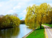 Ajardine el parque de la ciudad del otoño, pequeño río, colgando árboles Imagen de archivo