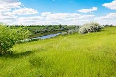 Ajardine el prado verde, orilla del río o lago, cielo azul y las nubes Foto de archivo