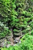 Ajardine el río de la montaña con las rocas grandes en la orilla Fotografía de archivo libre de regalías