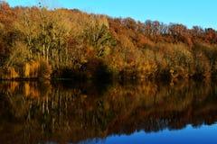 Ajardine em cores do outono com as árvores no lago ou no rio Fotografia de Stock
