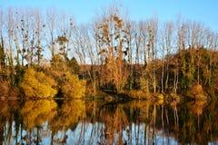 Ajardine em cores do outono com as árvores no lago ou no rio Fotografia de Stock Royalty Free