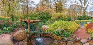Ajardine em jardins holandeses de Keukenhof da mola nos Países Baixos Imagens de Stock