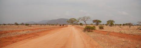 Ajardine em Kenya, em árvores e em montes, no safari Fotografia de Stock