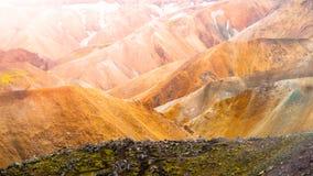 Ajardine em Landmannalaugar em montanhas do rhyolite da reserva natural de Fjallabak, aka em montanhas do arco-íris, Islândia Imagens de Stock