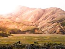 Ajardine em Landmannalaugar em montanhas do rhyolite da reserva natural de Fjallabak, aka em montanhas do arco-íris, Islândia Imagens de Stock Royalty Free