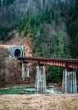 Ajardine em montanhas Carpathian com rio e a ponte railway Imagens de Stock