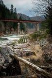 Ajardine em montanhas Carpathian com rio e a ponte railway Foto de Stock