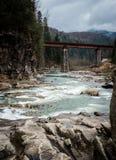 Ajardine em montanhas Carpathian com rio e a ponte railway Fotos de Stock Royalty Free