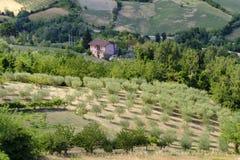 Ajardine em Romagna no verão do al Rubicone de Sogliano Fotos de Stock