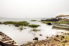 Ajardine em Toko perto do lago Volta na região de Volta em Gana Imagens de Stock