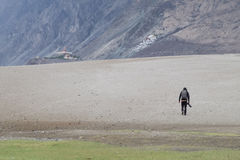 Ajardine em torno das dunas de areia de Hunder no vale de Nubra, Ladakh, Índia Foto de Stock Royalty Free
