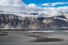 Ajardine em torno das dunas de areia de Hunder no vale de Nubra, Ladakh, Índia Fotografia de Stock