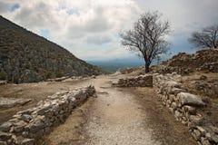Ajardine em torno de Mycenae e de ruínas da cidade Foto de Stock