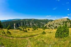 Ajardine em torno do desfiladeiro de Uvac do rio na manhã ensolarada do verão Fotografia de Stock Royalty Free