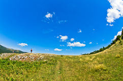 Ajardine em torno do desfiladeiro de Uvac do rio na manhã ensolarada do verão Imagens de Stock Royalty Free