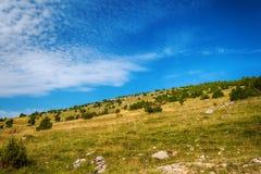 Ajardine em torno do desfiladeiro de Uvac do rio na manhã ensolarada do verão Foto de Stock
